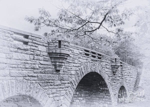 Duck Brook Bridge In Black And White Poster