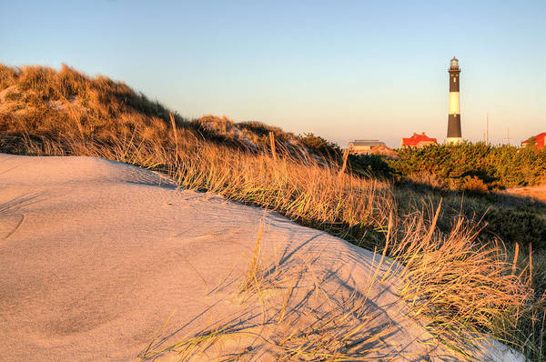 Dunes Of Fire Island Poster