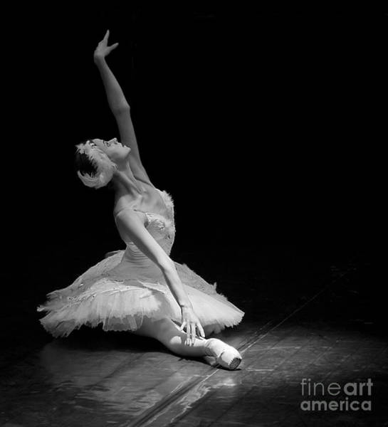 Dying Swan II. Poster