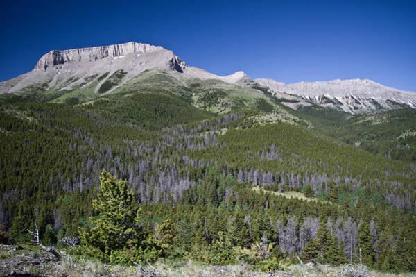 Ear Mountain, Montana Poster