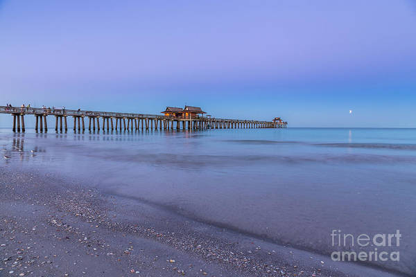Early Morning At Naples Pier Poster