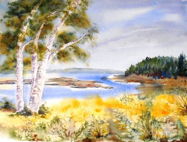 Early Summer Birches Poster