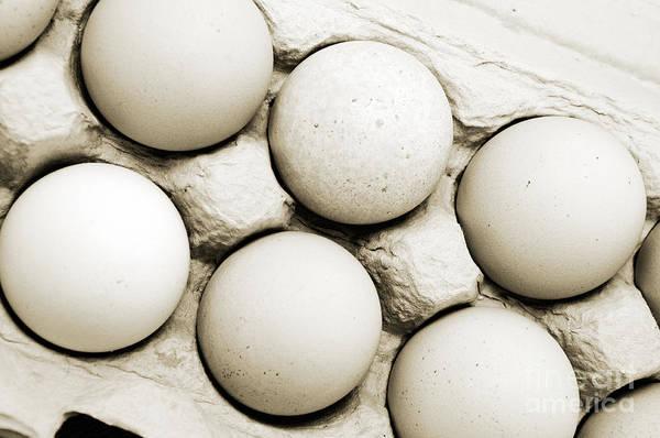 Edgy Farm Fresh Eggs Poster