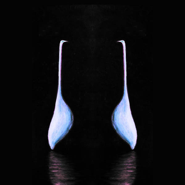 Egret On Black Mirrored Square Poster