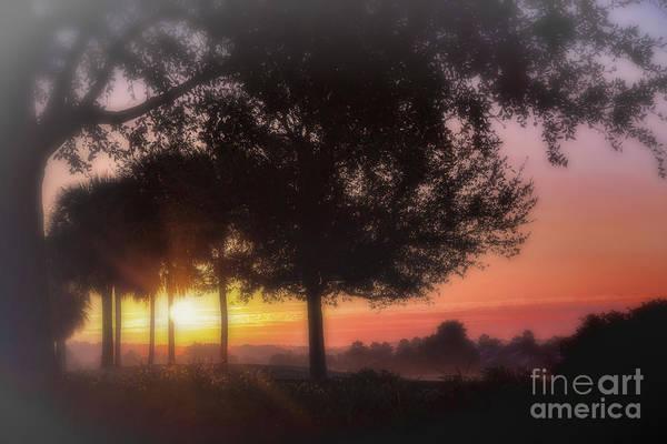 Enchanting Morning Sunrise Poster
