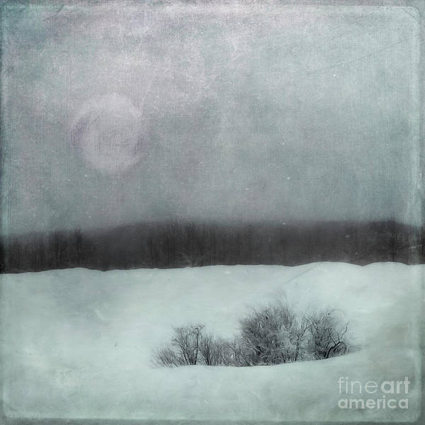 Essence Of Winter Poster