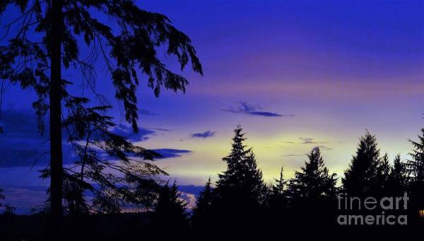 Evening Blue Poster