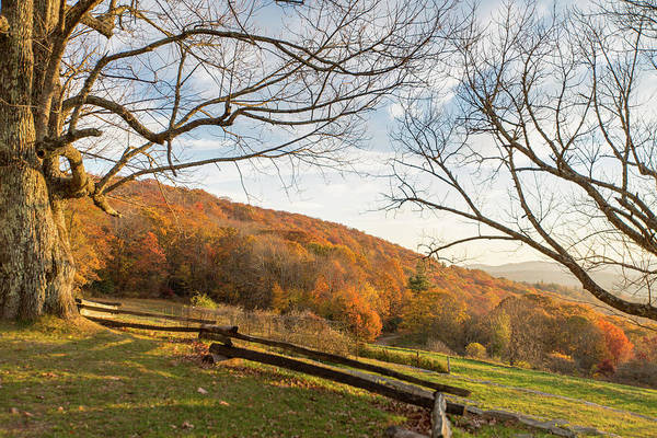 Fall Colors At The Moses Cone Estate Poster