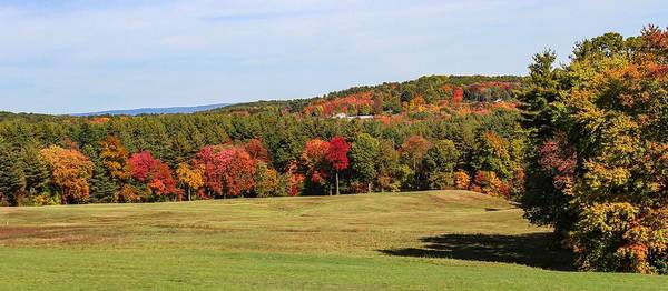 Fall Colors In Easthampton Poster