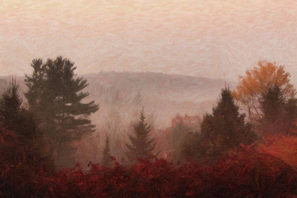 Fall Foliage Poster