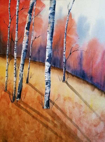Fall In The Birches Poster
