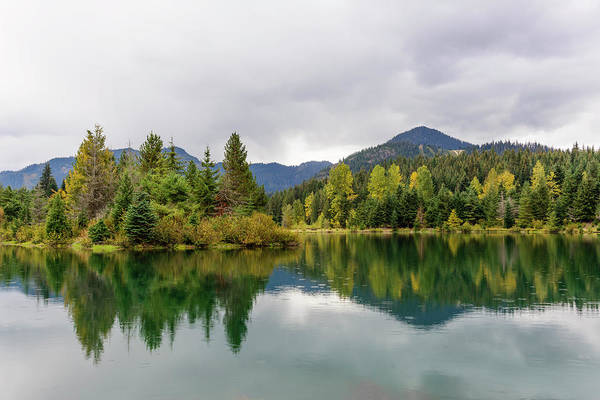 Falls Colors In Gold Creek Pond Poster