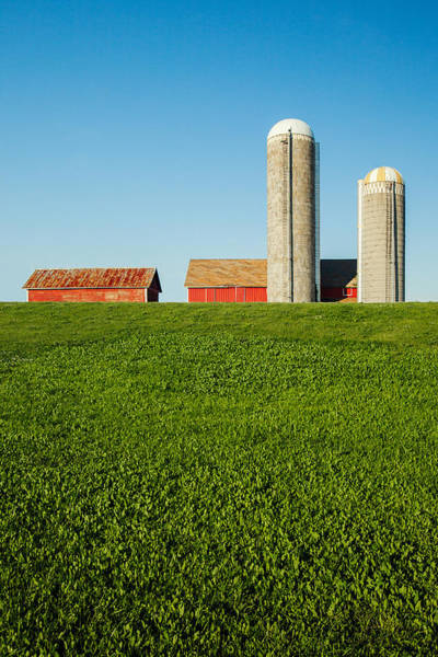 Farm Silos And Shed On Green And Against Blue Poster