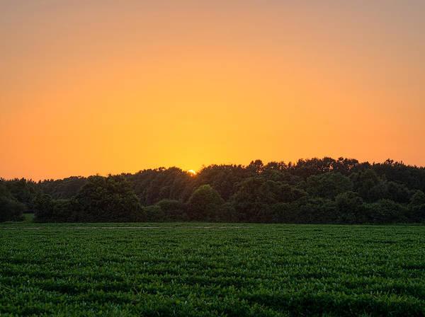 Farm Sunset Poster