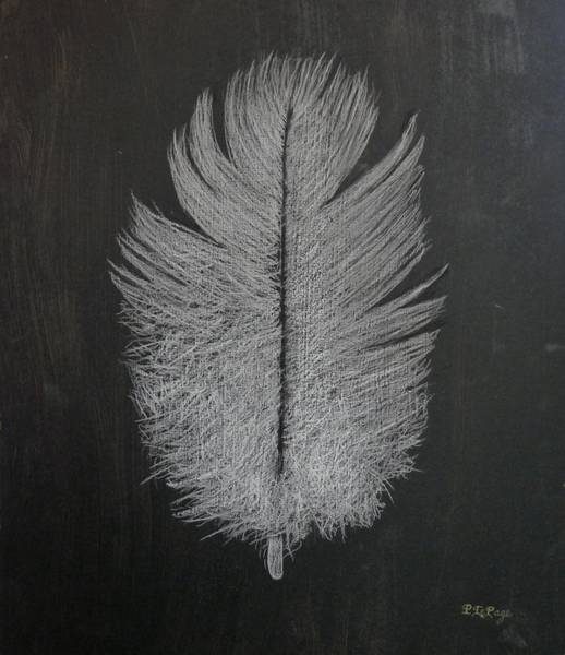 Feather 1 Poster