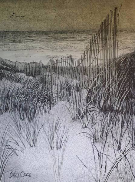 Fence In The Dunes Poster