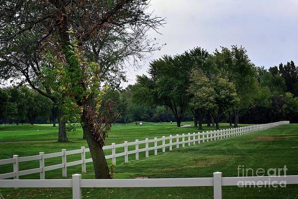 Fence On The Wooded Green Poster