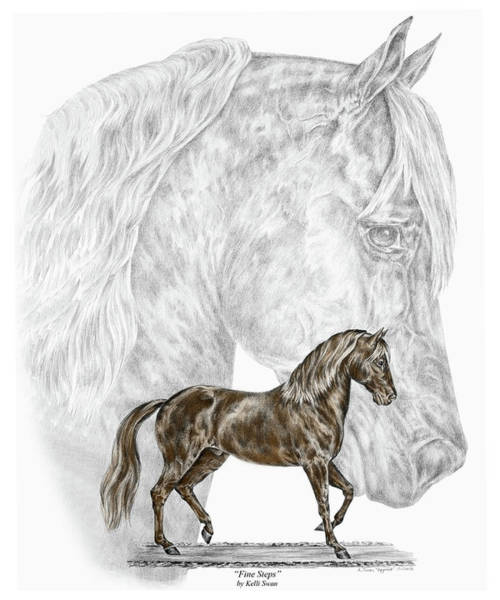 Fine Steps - Paso Fino Horse Print Color Tinted Poster