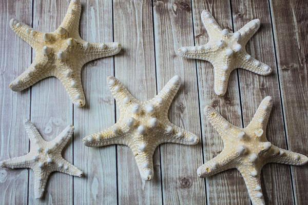 Five White Stars Poster