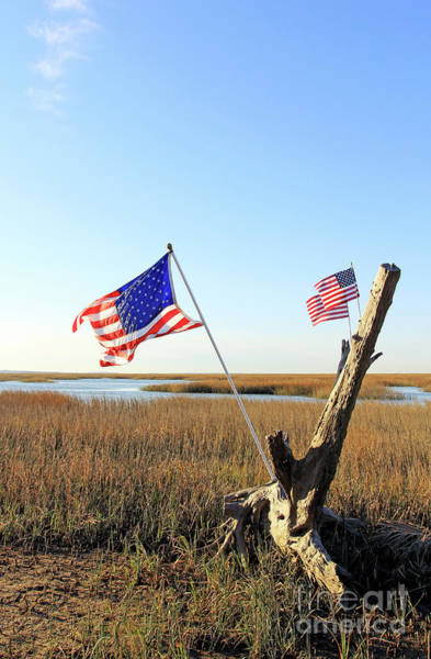 Flags Near Tybee Poster