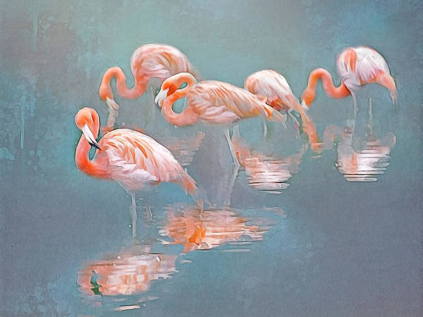 Flamingo Blues Poster