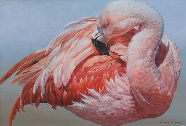 Poster featuring the painting Flamingo Preening by Alan M Hunt