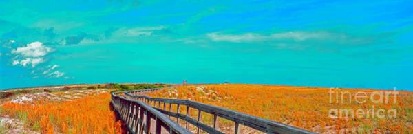 Florida Sand Dunes Atlantic New Smyrna Beach Poster