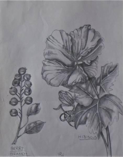 Flower Study 2 Poster