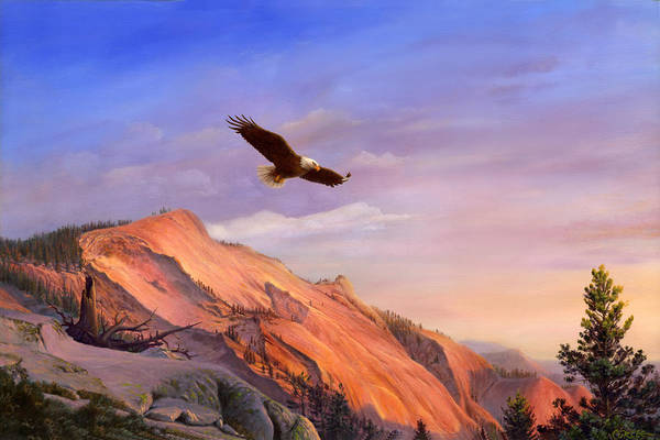 Flying American Bald Eagle Mountain Landscape Painting - American West - Western Decor - Bird Art Poster