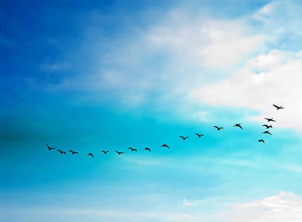 Flying Away Poster