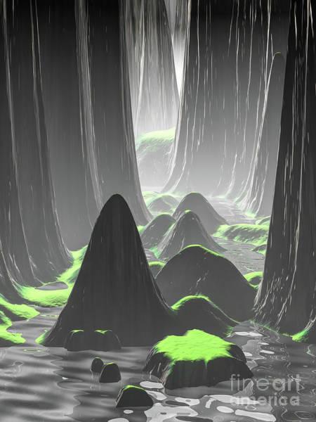 Foggy Canyon Walls Poster