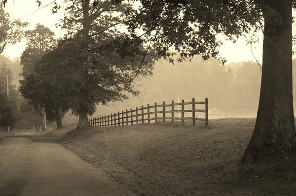 Foggy Fence Line Poster