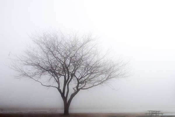 Foggy Picnic Poster