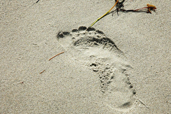 Footprint In The Sand  - South Beach Miami Poster