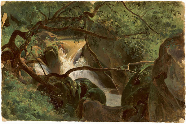 Forest Interior With A Waterfall Papigno Poster