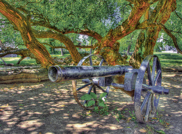 Poster featuring the photograph Fort Harrod Cannon by Sam Davis Johnson