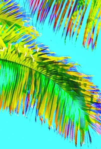 Fragment Of Coconut Palm Psychedelic Poster
