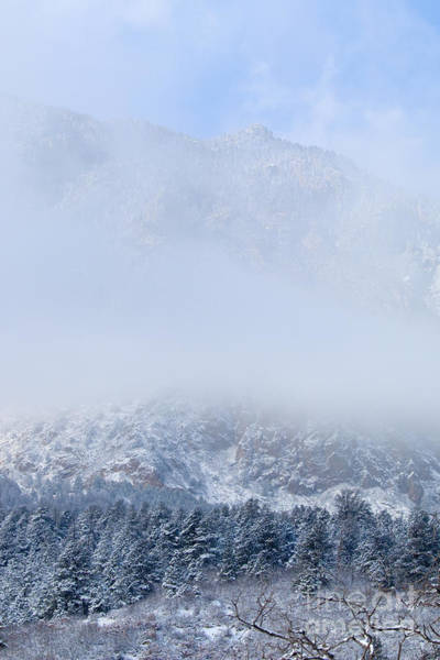 Fresh Snow In Cheyenne Mountain State Park Poster
