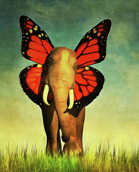 Friendly Elephant Poster