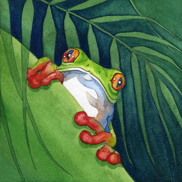 Frog On The Look Out Poster