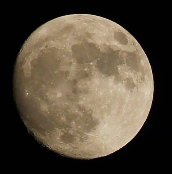 Full Moon 2016 Poster