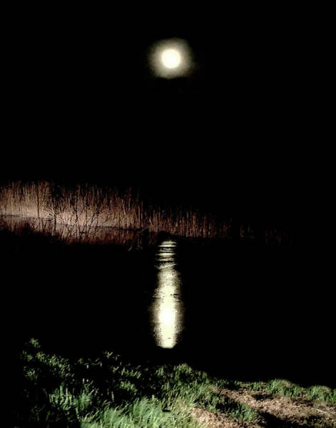 Full Moon Over Piermont Creek Poster