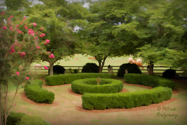 Garden At Colonial Heights Poster