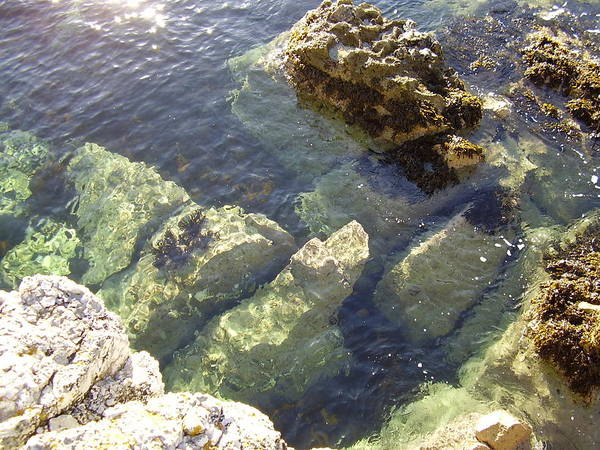 Garron Point Rock Pool Poster