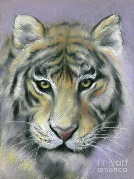 Gazing Tiger Poster