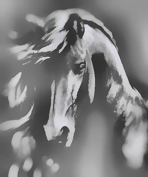 Ghost Horse Poster