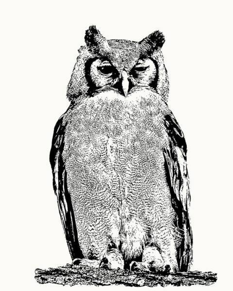 Giant Eagle-owl Perching Poster