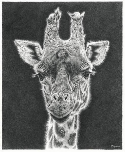 Giraffe Pencil Drawing Poster