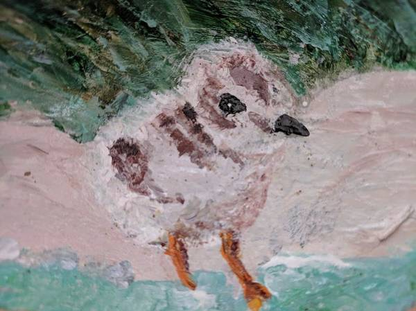 Good Harbor Piping Plover Chick #1 Poster