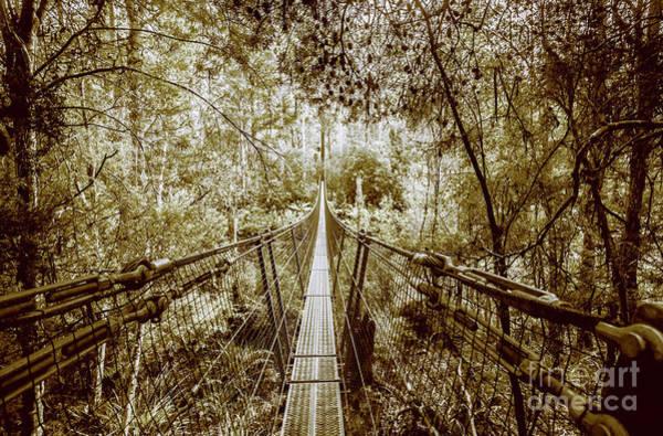 Gorge Swinging Bridges Poster